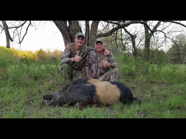 Hog Hunt with the Henry Long Ranger