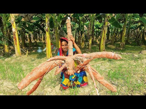 World MOST RARE Vegetables!! Shimul Potato/Cassava Kebab Special Recipe Cooking For Village Kids