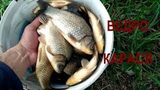 Лучшие водоемы подмосковья для рыбалки на рублевке