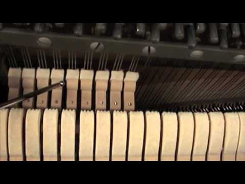 How to Buy a Great Used Piano - Step 4 inspect the hammers and ...