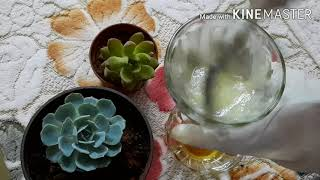 DIY Homemade Face Cream With Roses | ఇంట్లోనే గులాబీలతో ఫేస్ క్రీమ్ | Rose Face Cream For Soft Skin