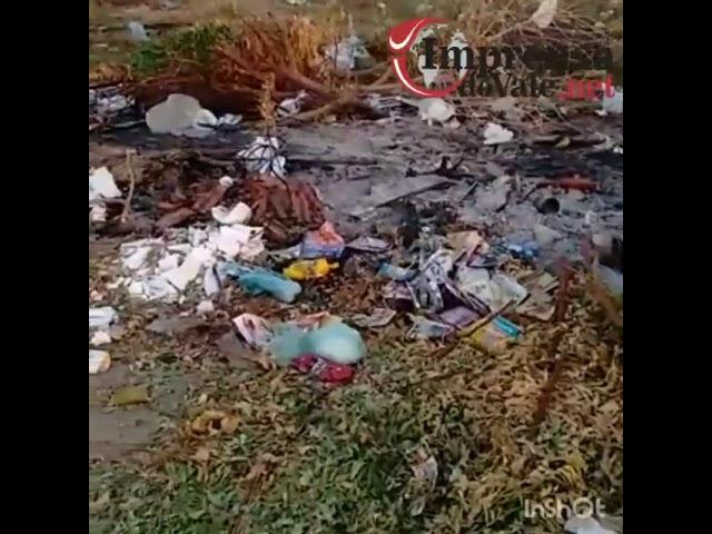 Moradores da Lagoa do Toco reclamam da falta de coleta de lixo na comunidade.