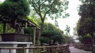 preview picture of video '2012/04/17 蘇州 留園 盆栽園 / Bonsai Garden of Liyuan in Suzhou'