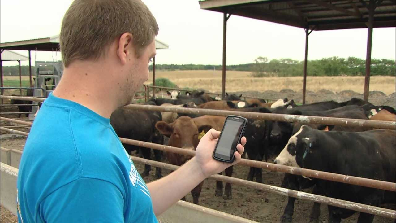 Open Video news story: ThermalAid heat-stress app.