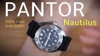 PANTOR Nautilus a Rugged Affordable 200m Diver $200!! Best Affordable Diver?