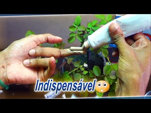 Come trattare la ruvidità di unghie