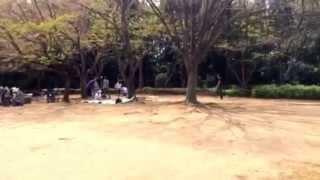 香澄公園のイメージ