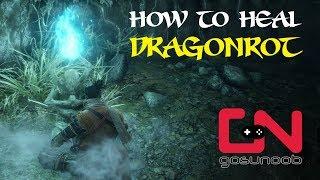 Sekiro Shadows Die Twice - How to Heal Dragon rot