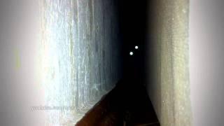 Смотреть онлайн Слабонервным не смотреть: кот из ада