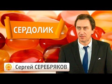 Агентство недвижимости новосибирск талисман