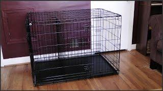 Dog Crate Setup