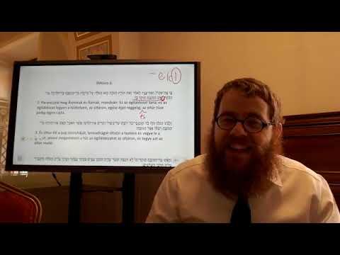 Jomá 45 – Napi Talmud 508- Hány tűzrakás volt az oltáron a Szentélyben?