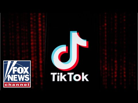TikTok to sue Trump administration over ban: Report