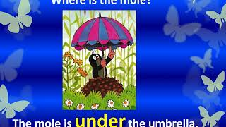 2ABCD - Video Lesson 3 –Summertime –2nd Grades