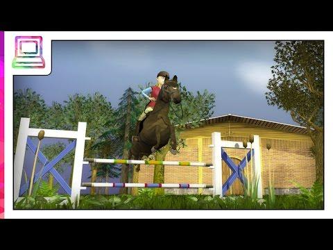 Dein Springpferd- Bau dir deinen eigenen Spring-Parcour
