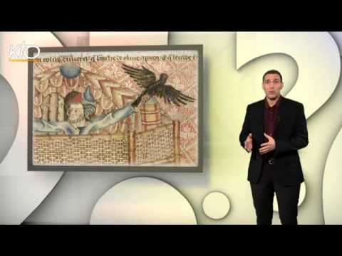Pourquoi la colombe est-elle le symbole de la paix ?