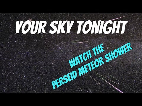 Your Sky Tonight - The Perseid Meteor Shower