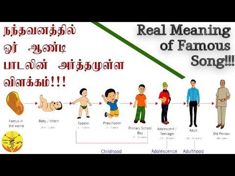 Naduvan Nandhavanathil Oru Aandi