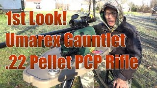 Umarex Gauntlet 22 Pellet Pre Charged Pneumatic Air Rifle 1st Look 50 Yard Accuracy Tests