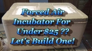 Build a Forced Air Incubator For UNDER $25!!