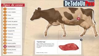 Los Mejores Cortes de Carne para Asado