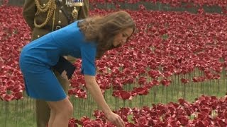 Prince William, Duchess Kate And Prince Harry Plant Poppies At First World War Tribute