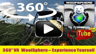 360 Videos | VR | Virtual Reality | WooFSphere | FreeRanging Husky Dogs in 360