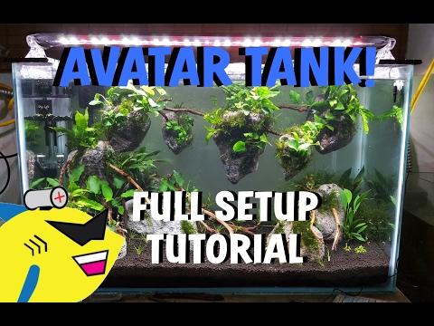 AVATAR PLANTED AQUARIUM: Shrimp Tank Setup Tutorial