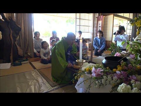 保育園の子どもたちがお釈迦様の誕生祝う 岡山・吉備中央町で1カ月遅れの「花祭り」
