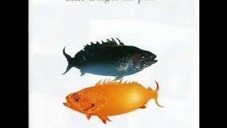 Seby e la sua Tromba - Antonello Venditti - Nata sotto il segno dei pesci