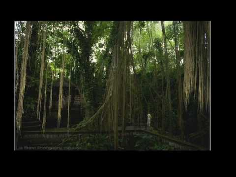 Paggamot ng kuko halamang-singaw sa kanyang mga paa ng mga video