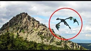 Is Dragon Really Exsist? | Dragon Spotted on Camera | dragon real video | in hindi