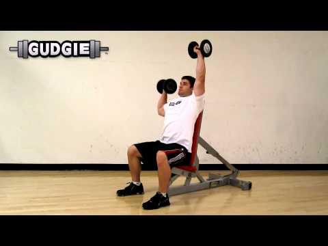Dumbbell seated press alternating