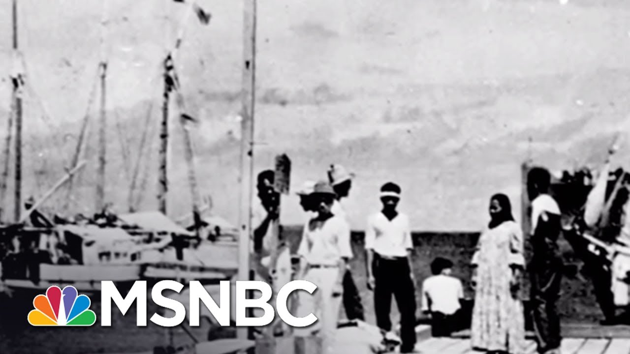 Amelia Earhart's New Chapter In The History Books | MSNBC thumbnail