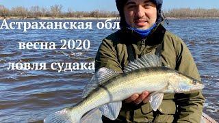 Отчет о рыбалке на озере никольское