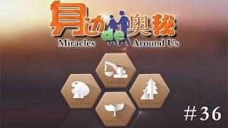 身边的奥秘 36 Miracles Around Us NewTV华语纪录片
