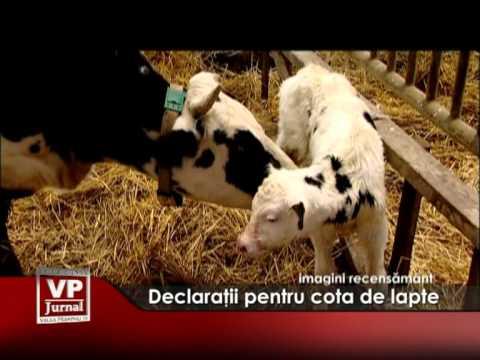 Declaraţii pentru cota de lapte