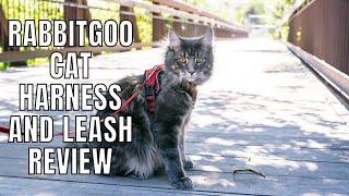 Rabbitgoo Cat Harness and Leash Review