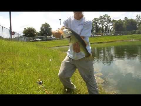 fishing a wal mart retention pond