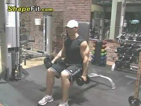 Shoulder Exercises - Seated Alternating Dumbbell Side Raises