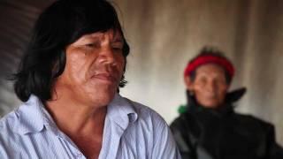 Algumas palavras do povo Guarani Kaiowá do Mato Grosso do Sul