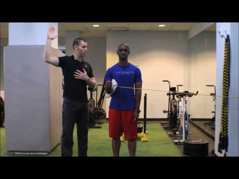 Shoulder External Rotator (Infraspinatus and Teres Minor) Isolated Activation