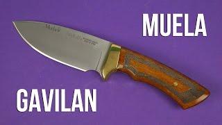 Muela GAVILAN - відео 1