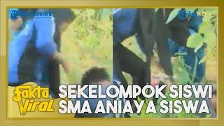 Fakta Viral Sekelompok Siswi SMA di Wakatobi Aniaya Seorang Siswa, Korban Dipukul hingga Ditendang