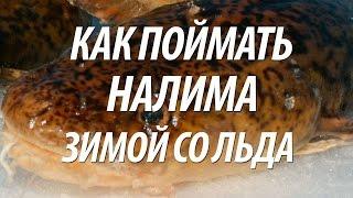 Рыбинск все для рыбалки