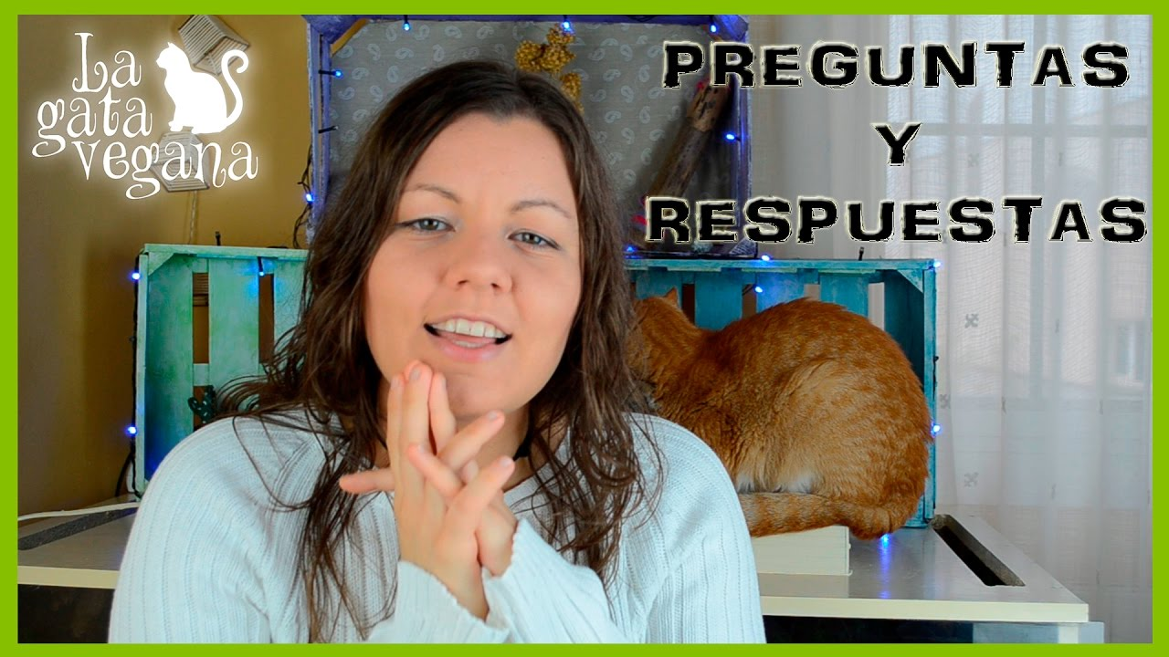 ¿POR QUÉ EMPECÉ EN YOUTUBE? | ESPECIAL 50000 SUSCRIPTORES | PREGUNTAS Y RESPUESTAS