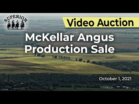 McKellar Angus Production Sale