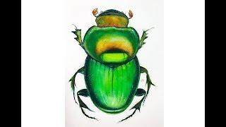 Watercolor Green Beetle Painting Tutorial