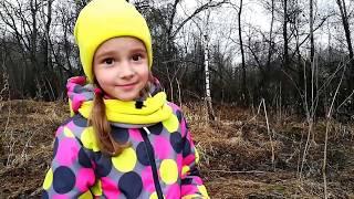Приключения в лесу и невидимый белый заяц. Как поставить березовый сок!? Муравейник в лесу.