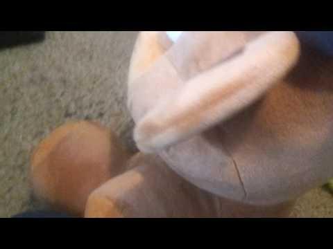 Die Schwangerengymnastik für die Abmagerung